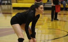 Paige McGriff named to All-State volleyball team