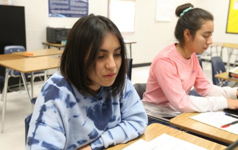 IB students study for final exams.